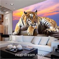 3D壁紙 1ピース 1㎡ 虎 タイガー 迫力風景 夕日 草原 寝室 リビング ショップ 耐水 防カビ m04379