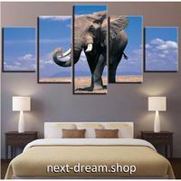 【お洒落な壁掛けアートパネル】 枠付き5点セット 象 ゾウ 動物写真 青空 ファブリックパネル インテリア m04624