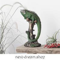 【オブジェ】 置物 インテリア 木に登るイグアナ 爬虫類 模型 リアル アンティーク 樹脂工芸 ギフト プレゼント m05212