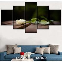 【お洒落な壁掛けアートパネル】 5点セット 白い薔薇 花 植物 自然景色 写真 絵画 ファブリックパネル インテリア m04063