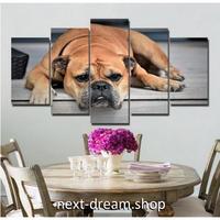 【お洒落な壁掛けアートパネル】 枠付き5点セット 犬 ぶさかわ 動物写真 ファブリックパネル インテリア m04608