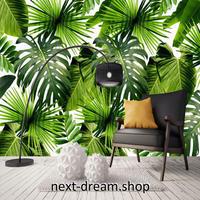 3D 壁紙 1ピース 1㎡ 自然風景 癒し トロピカル バナナの葉 ボタニカル インテリア 装飾 寝室 リビング h02170