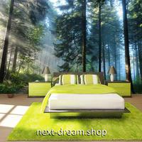3D 壁紙 1ピース 1㎡ 自然風景 森林 日の光 インテリア 装飾 寝室 リビング 耐水 防カビ h02454