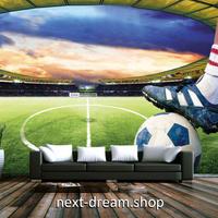 3D 壁紙 1ピース 1㎡ サッカースタジアム 立体空間 インテリア 部屋 寝室 リビング 防湿 防音 h03070