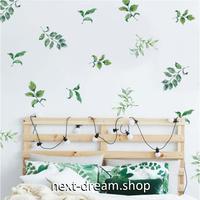 【ウォールステッカー】壁紙 DIY 部屋 装飾 寝室 リビング インテリア 50×70cm 観葉植物 葉っぱ イラスト m02271