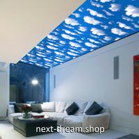 3D 壁紙 45cm×1000cm 青い空 白い雲 自然風景 DIY リフォーム インテリア 部屋 寝室 防水 防音 h03613