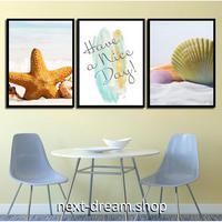 お洒落な壁掛けアートパネル 枠付き3点セット / 各15×20cm 海 ビーチ 貝殻 ポスター 絵画 ファブリックパネル m03395