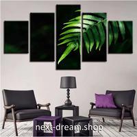 【お洒落な壁掛けアートパネル】 5点セット×30cm幅 黒 緑 植物 アレカヤシ ファブリックパネル インテリア ポスター m05123