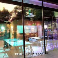 ウィンドウフィルム 50×500cm 半透明 ホログラムステッカー UVカット 窓ガラス フィルター 眩しさ軽減 文化祭 お祭り m02855