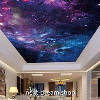 3D 壁紙 1ピース 1㎡ 宇宙景色 銀河系 星 天井用 インテリア 装飾 寝室 リビング 耐水 防湿 h02645