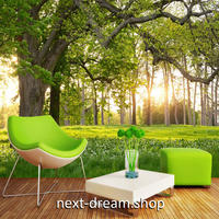 3D 壁紙 1ピース 1㎡ 自然風景 草原 森林 公園 太陽の光 インテリア 装飾 寝室 リビング h02344