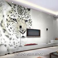 3D 壁紙 1ピース 1㎡ 動物フォト ヒョウ 白  インテリア 装飾 寝室 リビング 耐水 防湿 h02582