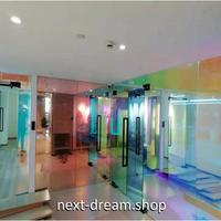 ウィンドウフィルム 50×1000cm 飾り付け UVカット 窓ガラス フィルター 眩しさ軽減 ハロウィン デコレーション m02874