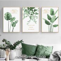 お洒落な壁掛けアートパネル3点セット (枠なし)/ 観葉植物 緑 モンステラ 50×70cm(各) ポスター 絵画 インテリア m03235