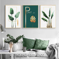 お洒落な壁掛けアートパネル3点セット (枠なし)/ 観葉植物 緑 ゴールド 50×70cm(各) ポスター 絵画 インテリア m03234
