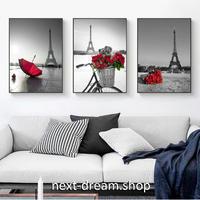 お洒落な壁掛けアートパネル3点セット(枠なし) / 各30×40cm エッフェル塔 赤い薔薇 パリ ポスター 絵画 インテリア m03256