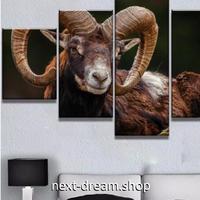 【お洒落な壁掛けアートパネル】 枠付き5点セット 雄羊 動物写真 ひつじ ファブリックパネル インテリア m04654