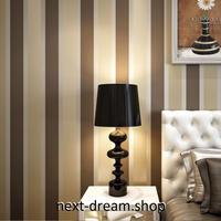 3D 壁紙 53×1000㎝ ストライプ 縦縞模様 DIY 不織布 カビ対策 防湿 防水 吸音 インテリア 寝室 リビング h02071