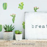 【ウォールステッカー】壁紙 DIY 部屋 シール 寝室 リビング インテリア イラスト サボテン 植物 24個セット m02359
