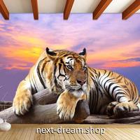 3D 壁紙 1ピース 1㎡ 動物描写 虎 夕暮れ時のサバンナ インテリア 装飾 寝室 リビング 耐水 防湿 h02479