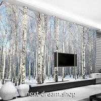 3D 壁紙 1ピース 1㎡ 自然風景 森林の景色 樺の木 雪 インテリア 装飾 寝室 リビング h02298