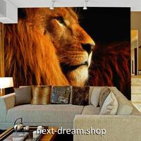 3D 壁紙 1ピース 1㎡ 動物フォト ライオン インテリア 装飾 寝室 リビング 耐水 防湿 h02523