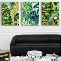 お洒落な壁掛けアートパネル 枠付き3点セット / 各15×20cm 緑 ボタニカル 植物 絵画 ファブリックパネル m03452