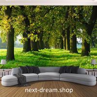 3D 壁紙 1ピース 1㎡ 自然風景 森林 並木道 緑 インテリア 装飾 寝室 リビング 耐水 防カビ h02388