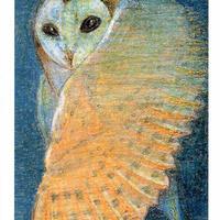 ポストカード  クレヨン画 4枚セット