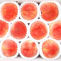 【贈答にぴったり】さくら白桃 3kg(9〜10玉)