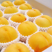 【期間限定】黄金桃 3kg(11〜12玉)