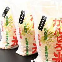 【2020年新米】岐阜県産 農家直送 日吉高原がんばろ米【玄米】【3種食べ比べセット】15kg (各5kg×3袋)  / もち麦1袋付き 【送料無料】