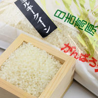 令和3年予約分【2021年新米:ミルキークイーン】岐阜県産 農家直送 日吉高原がんばろ米 (5kg)|ほんのり甘く、冷めても美味しいお米