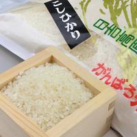 【2020年新米:コシヒカリ】岐阜県産 農家直送 日吉高原がんばろ米 (5kg)|乾田直播で生産し、粘土質土壌にて特殊栽培