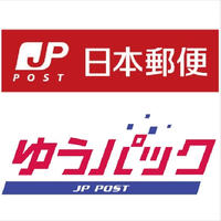 ◆チランジア(エアプランツ)◆ゆうパック便+料金/330円