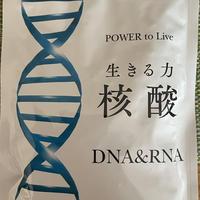 生きる力 核酸 DNA & RNA (5袋以下購入の方:1袋6000円)