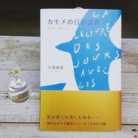 カモメの日の読書