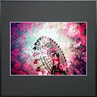 fleur -華の舞-
