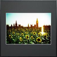 落日の倫敦