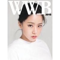 WWB(ワイワイ本)2015