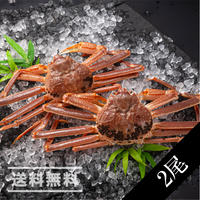 活本ズワイ蟹 2尾(かに太郎)※送料無料(※沖縄、離島除く)