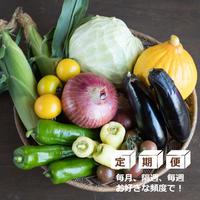【定期便】HOMEMAKERS 旬野菜セット
