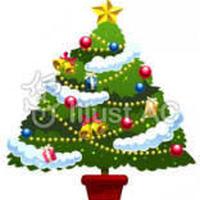 (メール便対応400gまで)クリスマスブレンド2019 季節限定 100g 中煎りプラス