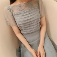 chiffon blue vintage dress