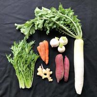 お野菜セットS(送料込)
