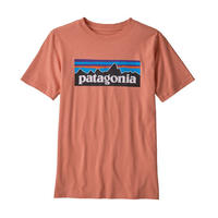 patagonia Boys' P-6 Logo Organic T-Shirt [MEMN] 62153 (PATAGONIKS18019)