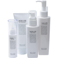 BLG基礎化粧品4品セット