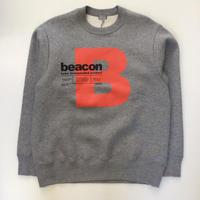 kolor BEACON   21WBM-T08234   GREY