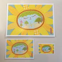 百歳美人カード3枚セット