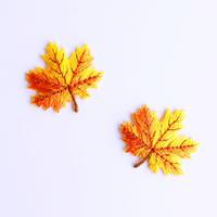 アイロンワッペン【カエデの葉 2枚セット メープル】アメリカ